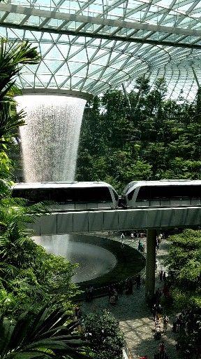 #travel #singapore #airport #nature #waterfalls #wanderlust
