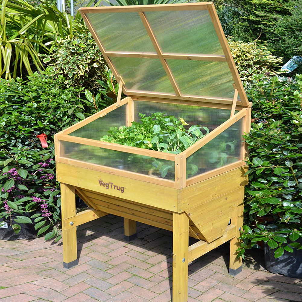 Protect your plants and improve plant growth with this VegTrug Cold ...
