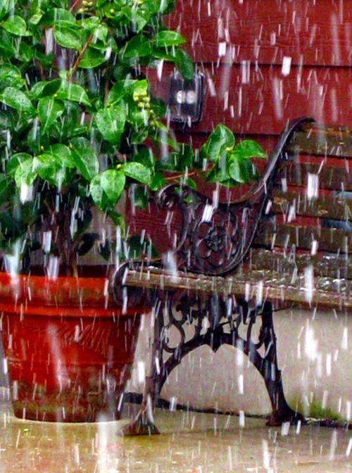 A rainy day  benches - © labutle on flickr