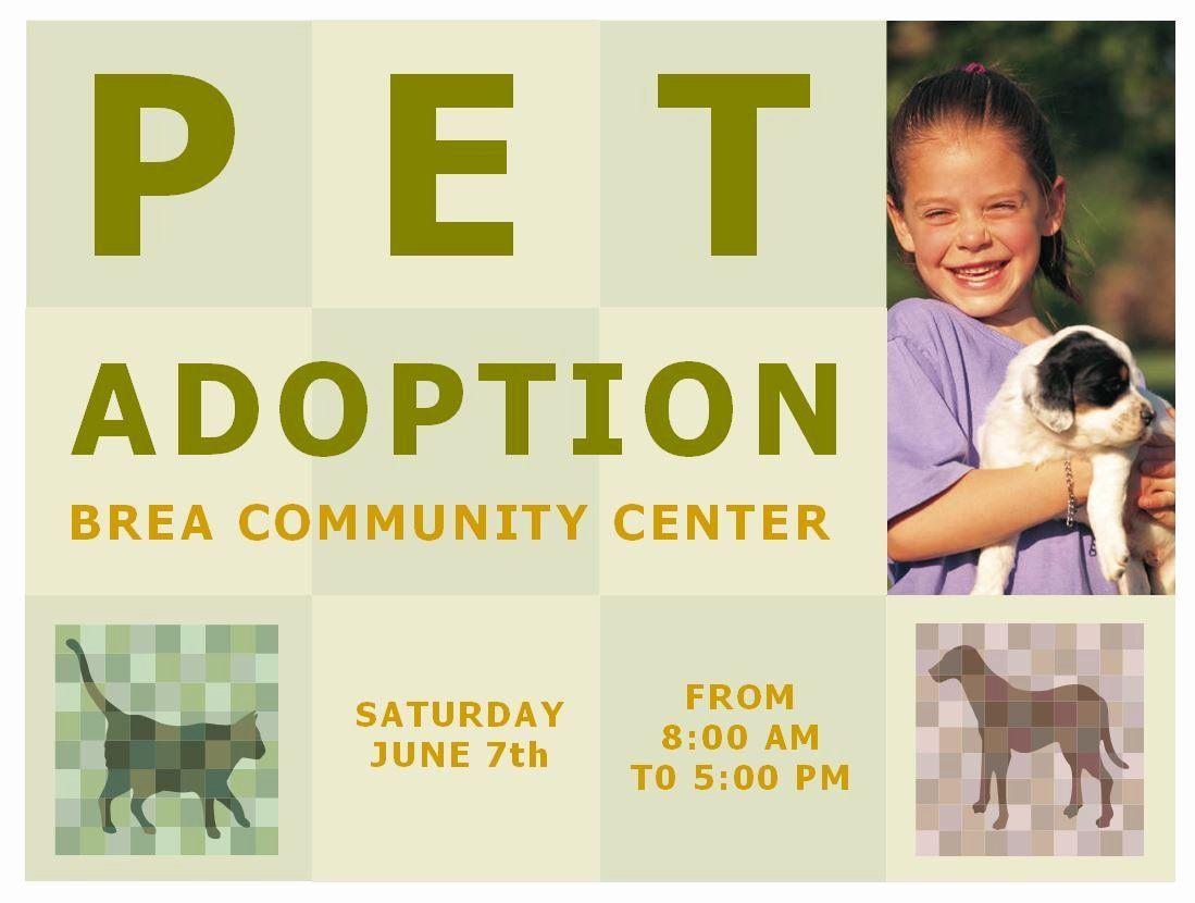 Pet adoption flyer template inspirational pet adoption