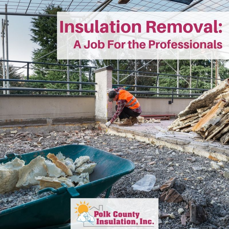 Pin by Polk County Insulation on Insulation Services