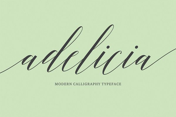 Adelicia Script (40% Off) by Seniors on Creative Market