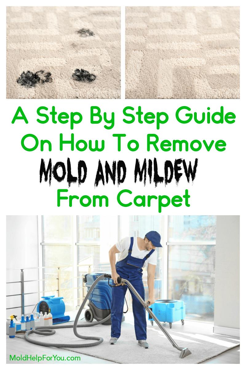 0ff6669c2eaa55d1f13b091df33dcd99 - How To Get Rid Of Mold Out Of Carpet