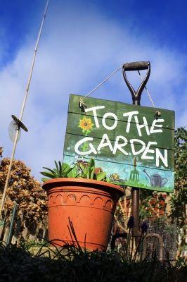 Gaden Growing Guide- How To Prepare Your Garden