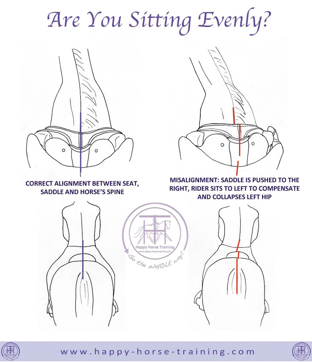 Postural alignment is essential to balanced, effective riding. The ...