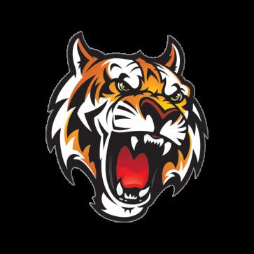 Mascot Tiger Head 01947 Tiger Illustration Mascot Tiger Head