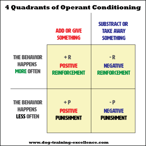 classical operant conditioning examples