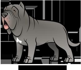 Cartoonize Your Pet Neapolitan Mastiff Cartoon Animals Cartoon Dog Pets