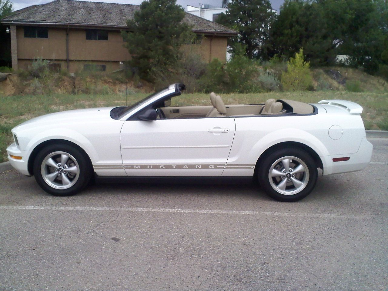 2006 Ford Mustang Pictures Cargurus 2006 Ford Mustang Ford Mustang Mustang
