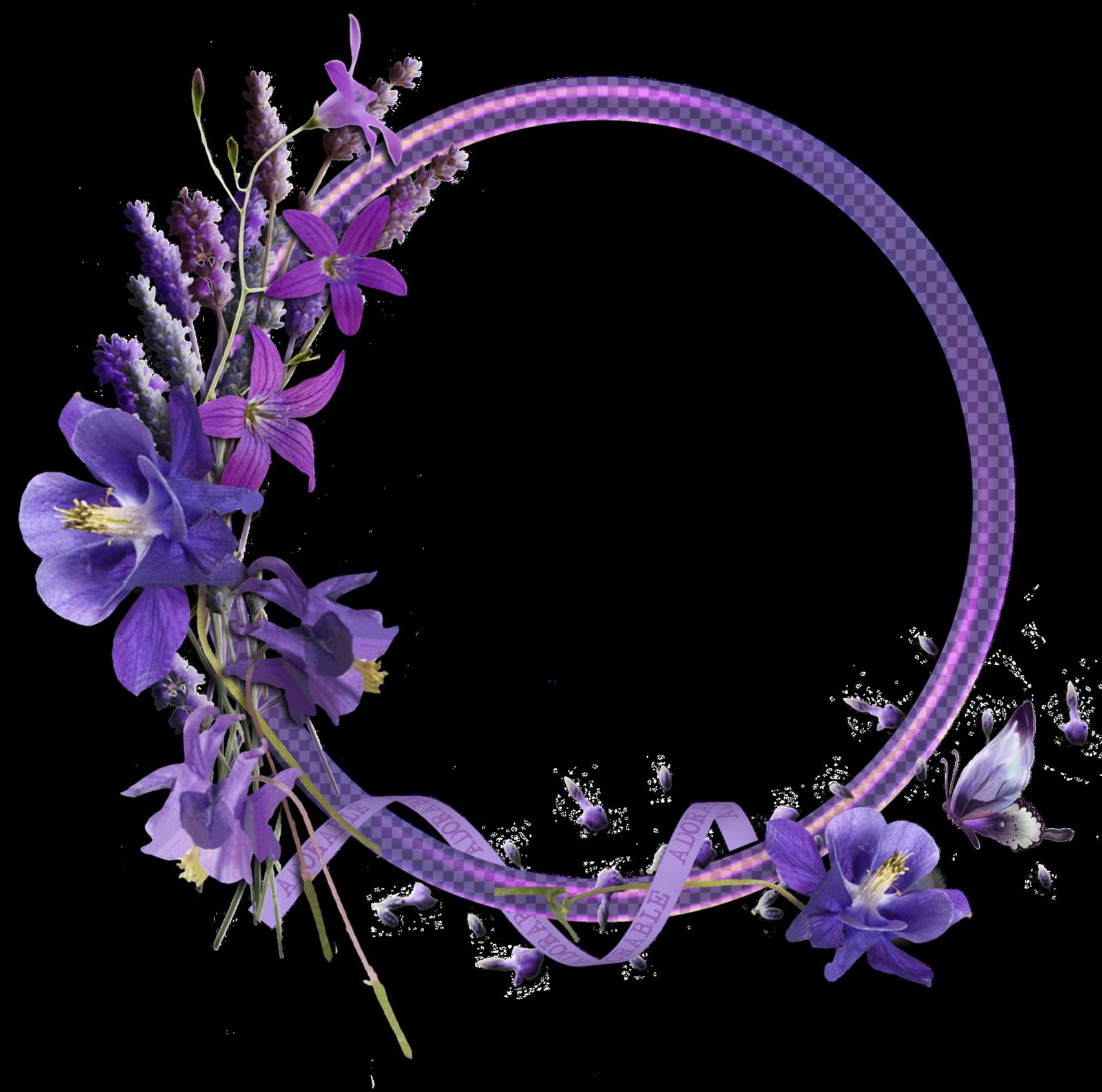 Png1 Png Imagem Png 1600 1585 Pixels Flower Border Floral Border Floral Wreaths Illustration