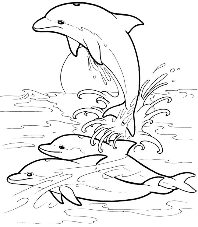 Welcome to Dover Publications Dolphins Dream Designs | Kids ...