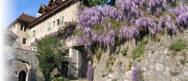 Chambres d'hôtes La Vallombreuse proche du Lac d'Annecy, à Menthon St Bernard