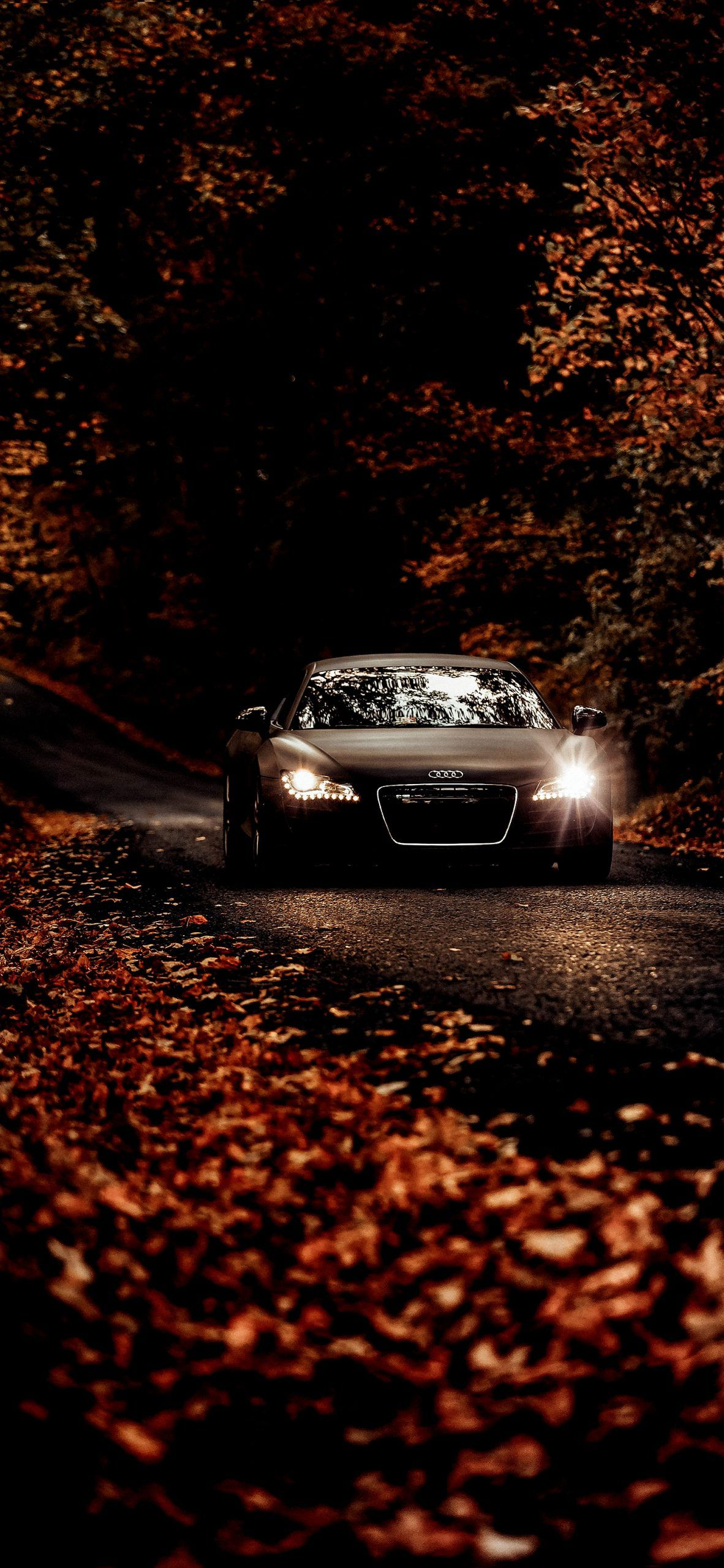 Fall Drives On Country Roads In Audi In 2020 Audi Cars Car In The World Car Backgrounds