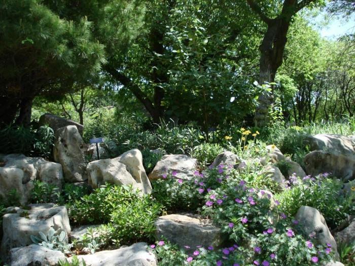 Schatten Pflanzen mit einem Steingarten kombinieren | Haus & Garten ...