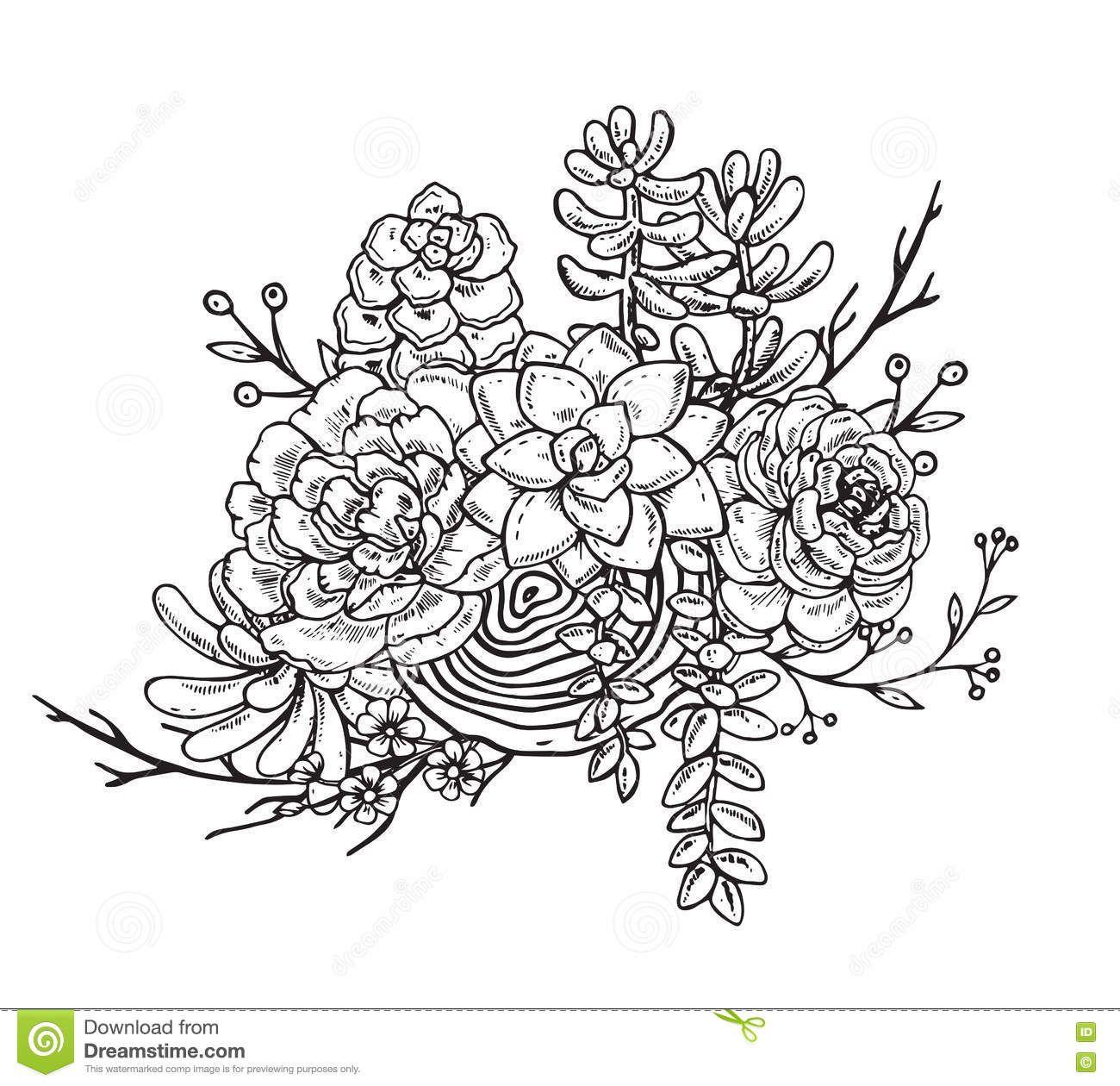 Pin De Maria Elena En Flowers