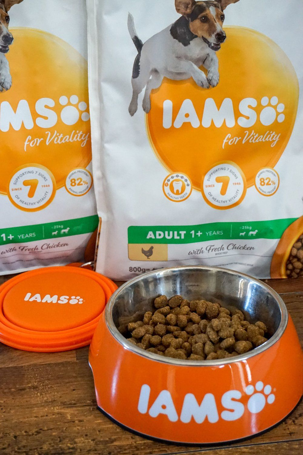 Photo From Iams Pet Models Collection By Love To Laugh Photography