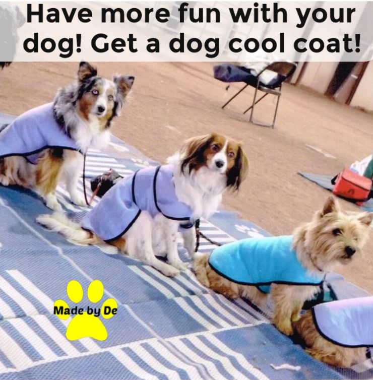Cool Dogs Have More Fun Get A Dog Cool Coat From Made By De And