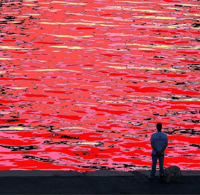 Red Sea by Dominique Gerard