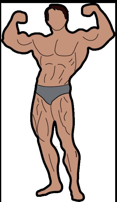 Arnold Schwarzenegger Golden Era Bodybuilding Pose Sticker In 2021 Schwarzenegger Bodybuilding Bodybuilding Arnold Schwarzenegger Bodybuilding