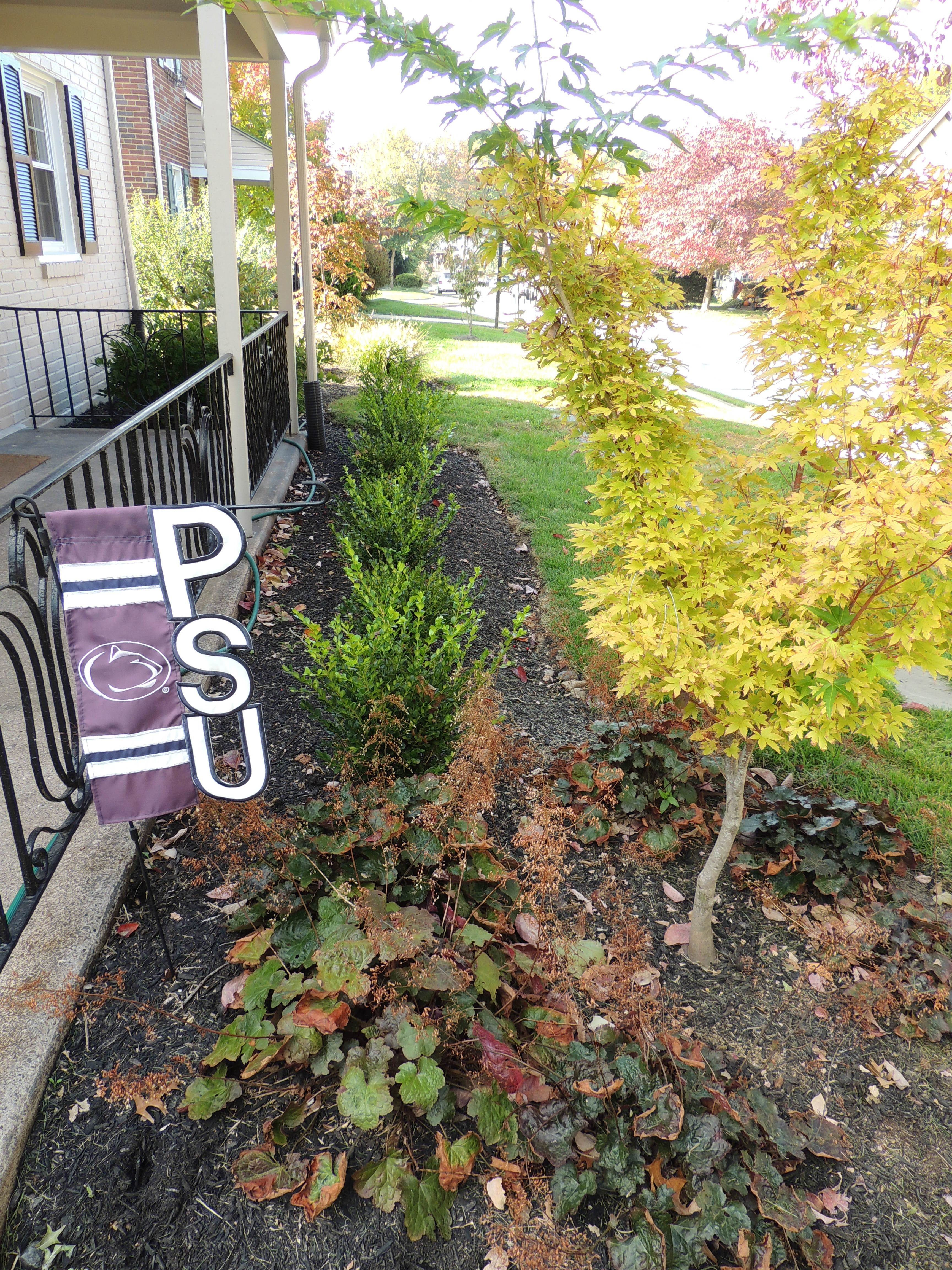 Small front foundation planting idea. Add year-round color with ...