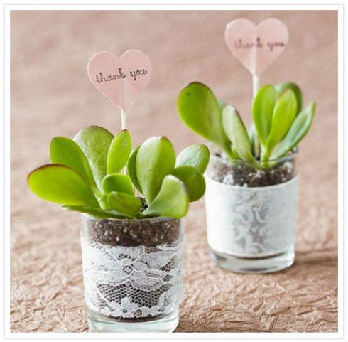 Inspiration  les plantes succulentes pour le mariage Les plantes