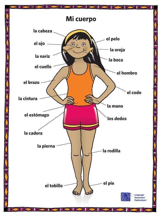 Image Result For Body Parts In Spanish  Clase De Español  Spanish Worksheets, Body Parts In