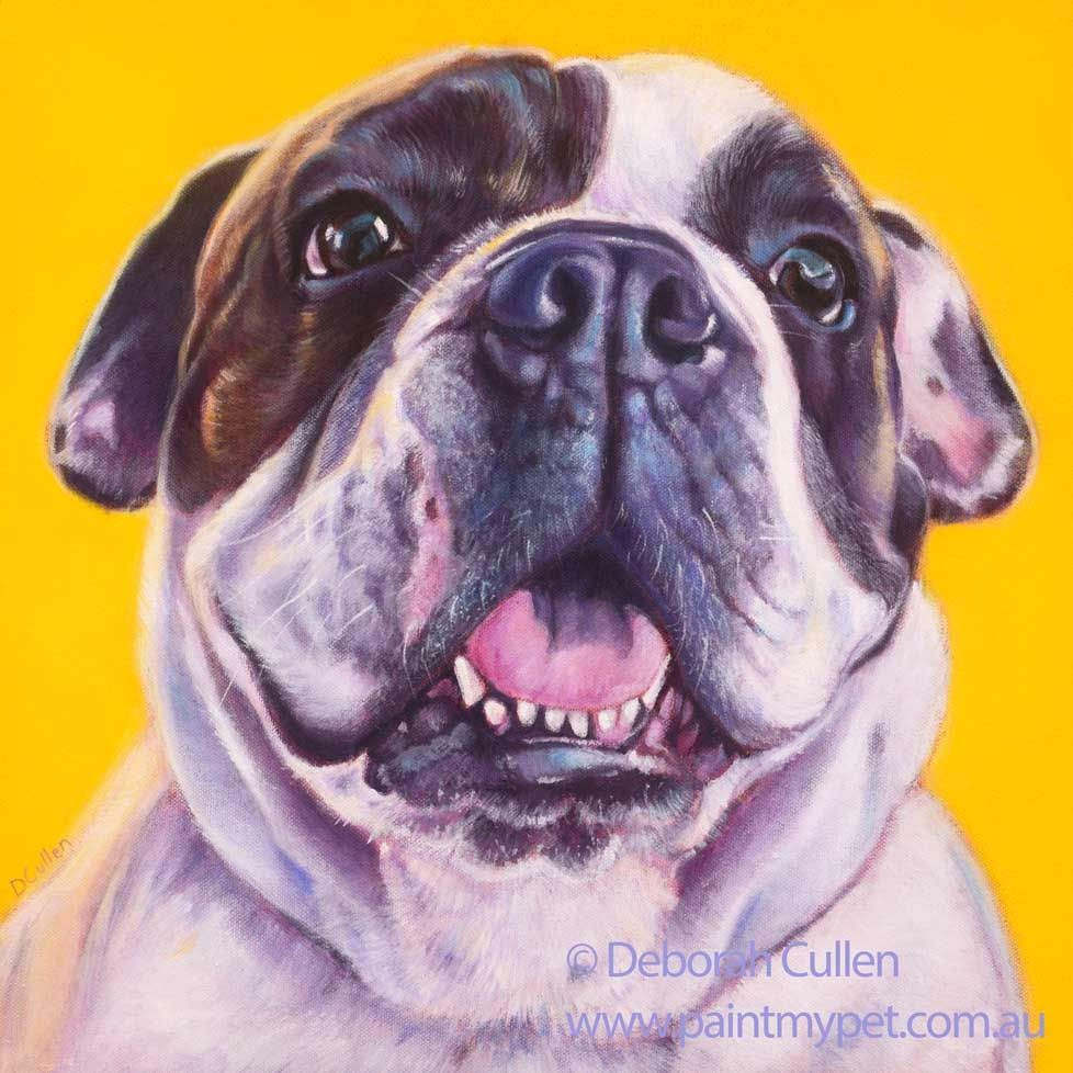 Choba English Bulldog Pet Portrait Painting Paintmypet Pet Portraits Perth Pet Portrait Paintings Bulldog Art Pet Portraits