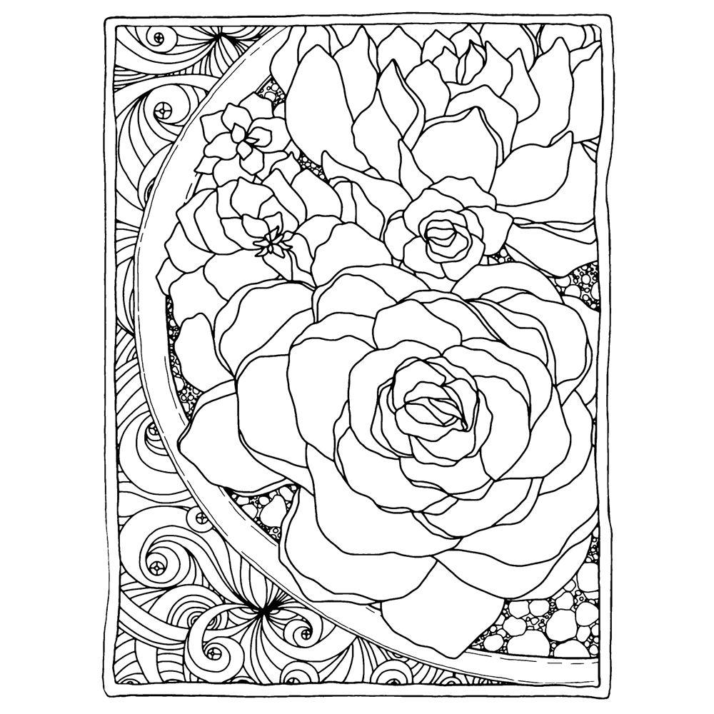 Art Gone Wild Catherine Scanlon Cling Stamp FRAMED SUCCULENTS AGC3 2826 Zoom Image