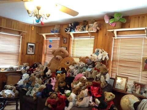 A whole lot of teddy's