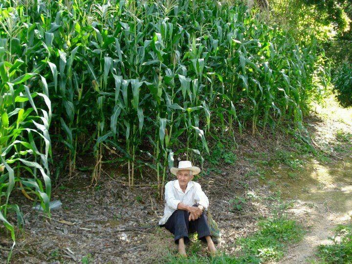 Agricultor Salvadoreño