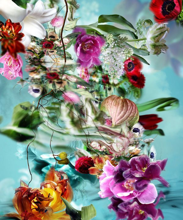 isabelle menin isabelle menin flores pinterest papier peint floral peinture fleurs les arts
