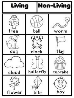 Free Printable Living And Non Worksheets Saferbrowser Yahoo Image Search Results