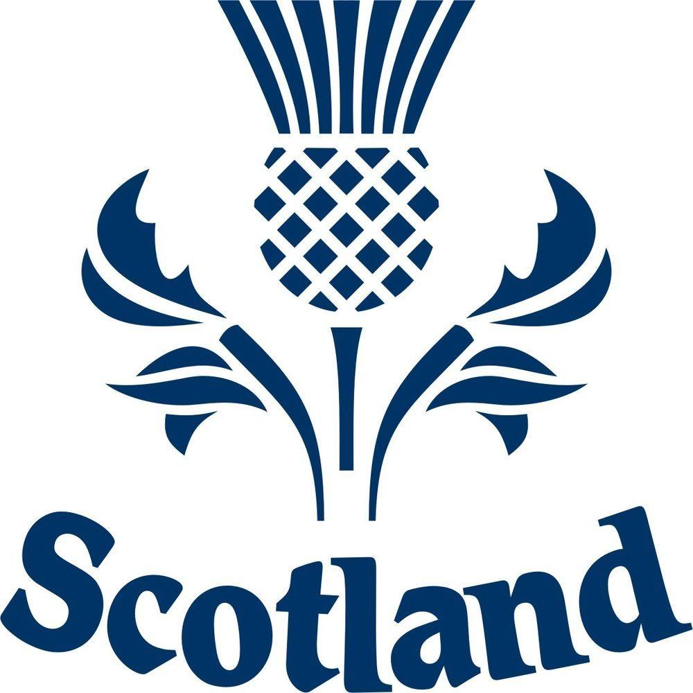 Thistle Stencil Cliparts.co Scottish thistle, Scotland
