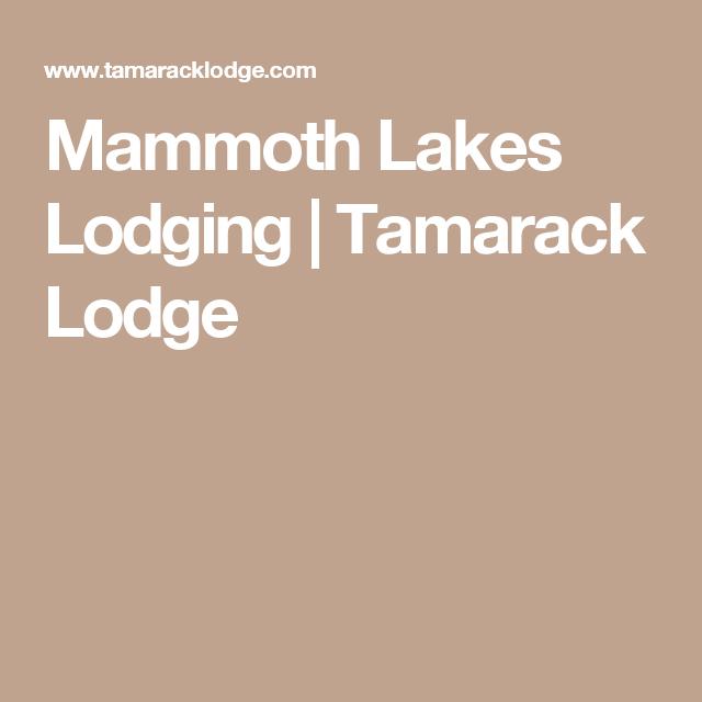 Mammoth Lakes Lodging Tamarack Lodge Mammoth Lakes Sierra Dog