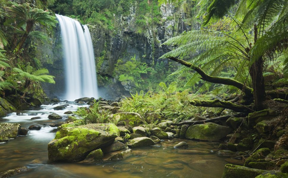 Rainforest Waterfall Hd Wallpaper With Images Waterfall