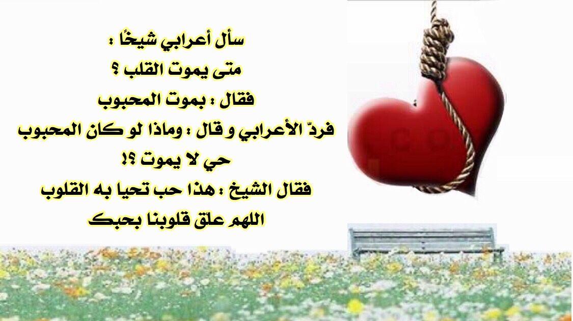 متى يموت القلب Arabic Quotes Quotes