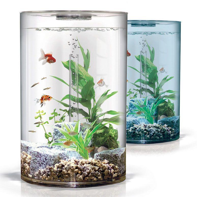 Biube Pure Aquarium Small Fish Tanks Aquarium Design Fish Tank