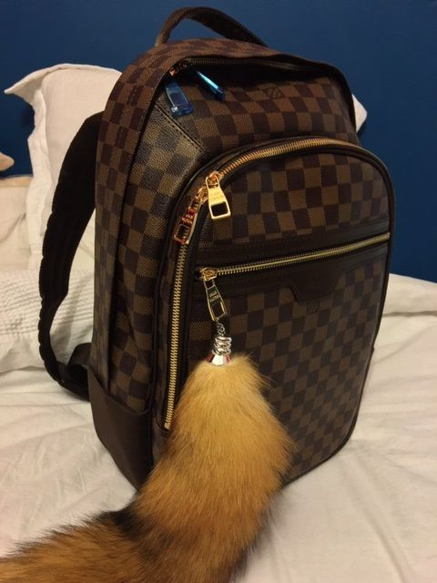 1a77aa71a3df Louis Vuitton Damier Ebene Michael  Backpack from  PurseValley ...