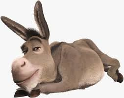 you are a big fat donkey because somthings you act like a jerk