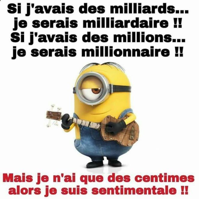 Citation Les Minions Que Humor Funny Jokes Funny Art