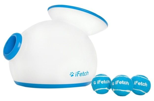 A little fetch machine that automatically launches balls for your dog to retrieve and drop back in.