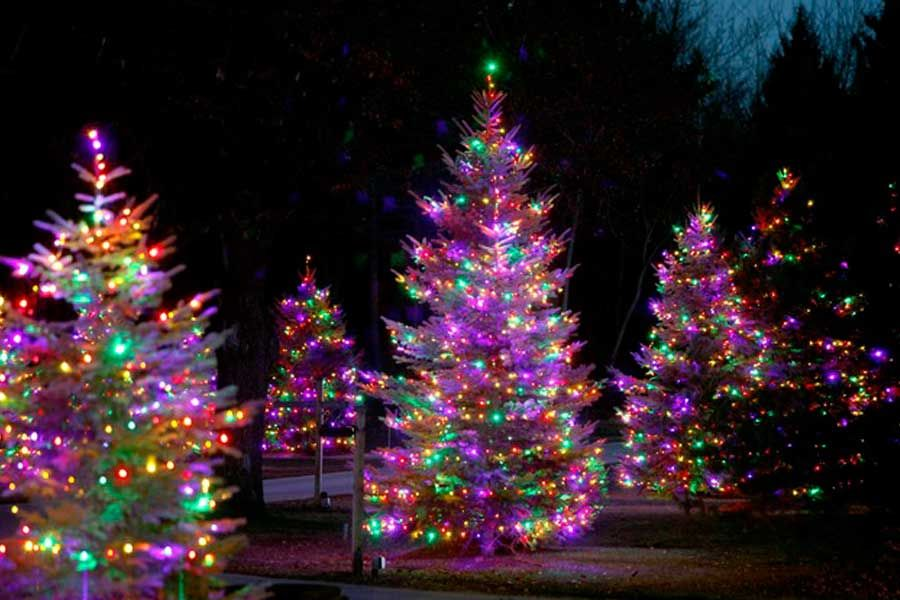 Residential holiday decorating and christmas light service outdoor christmas aloadofball Gallery