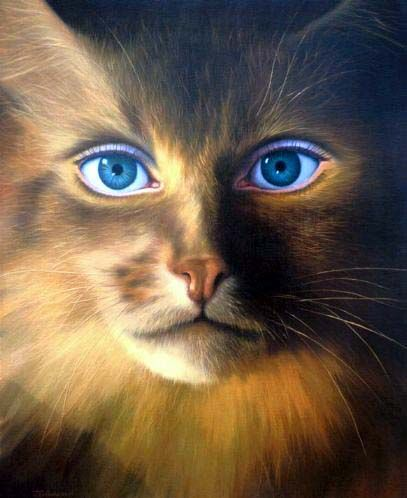 catwoman by Jim Warren