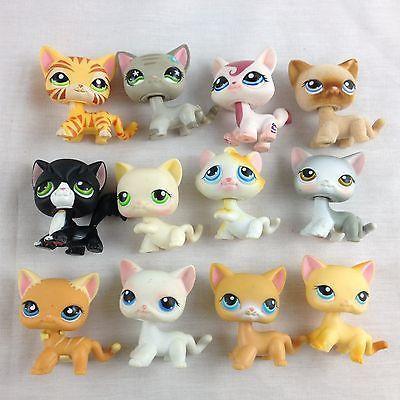 littlest pet shop cats # 13