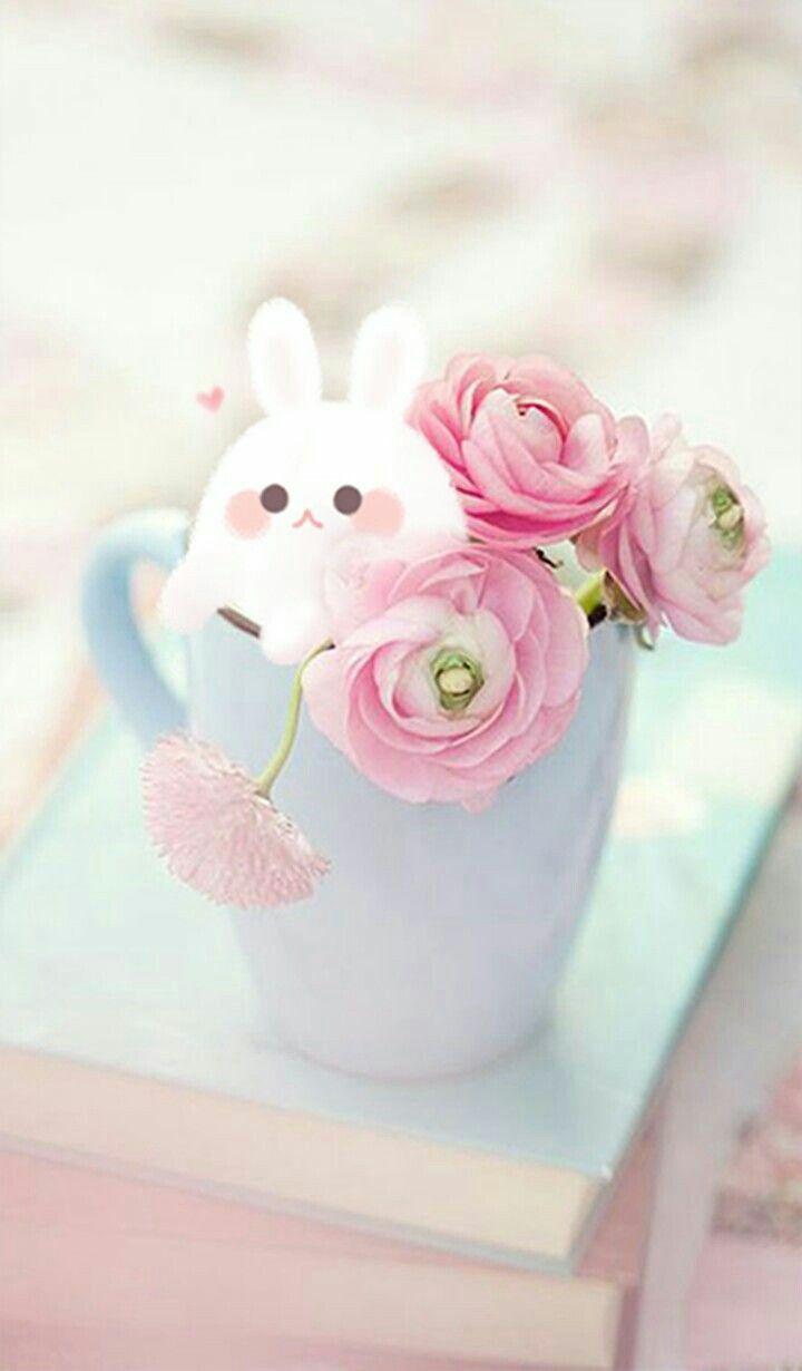 Фото нежные милые цветы