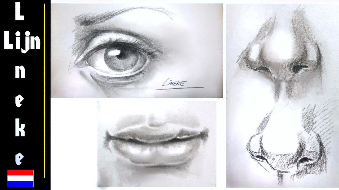 oog neus en mond tekenen belangrijke tips voor beginners