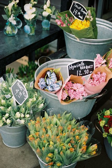 Spring Flowers For Sale Petals Pinterest Flowers Flowers For