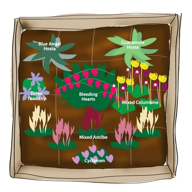 flower garden plans zone 4 perennial garden plan in zones ...