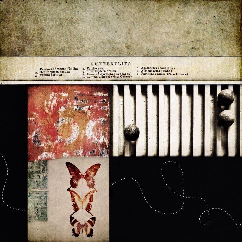 Janet Matthews - Digital iPhone collage