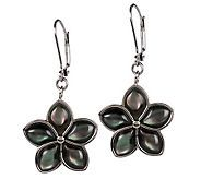 J158251 - Steel by Design Mother of Pearl Flower Lever   Back Earrings